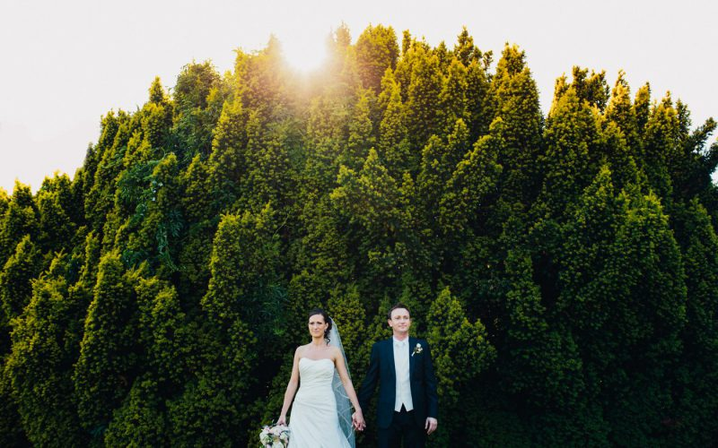 Vineyard wedding in Vienna