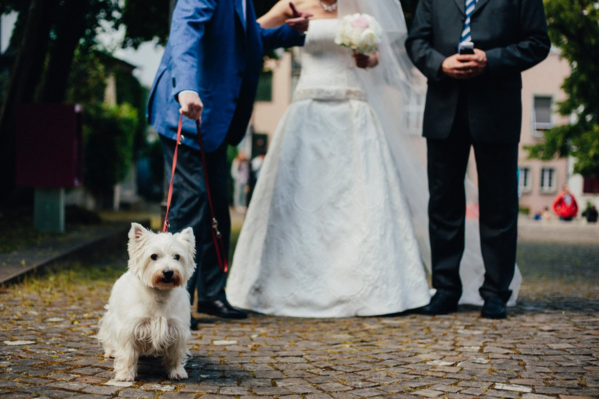 Hochzeit Zuerich Rigiblick 17