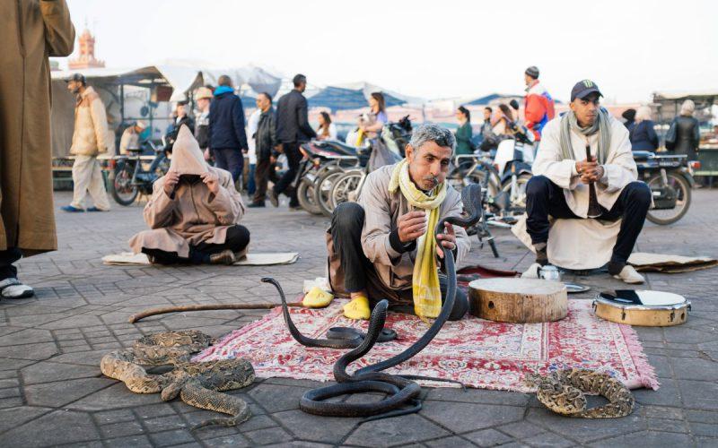Eine Woche im quirlig bunten Marrakesch