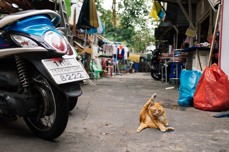 Thailand-Bangkok 41
