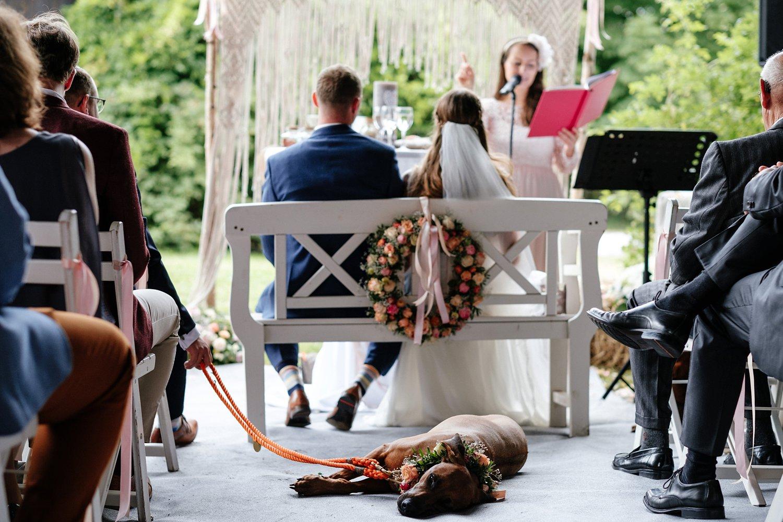 Hochzeit mit Hund freie Trauung 20