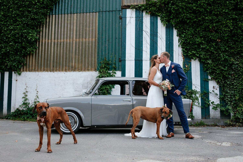 Hochzeit mit Hund freie Trauung 49