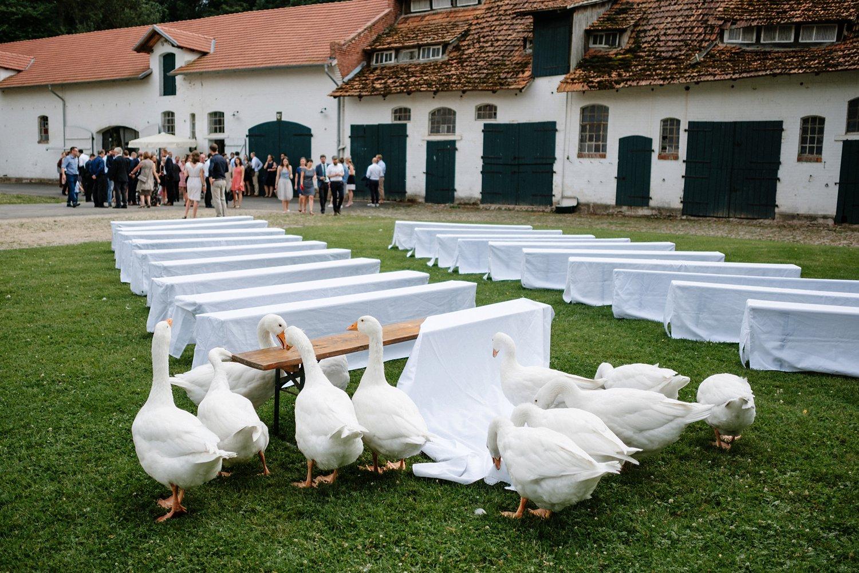Hochzeit Rittergut Besenhausen Goettingen 21