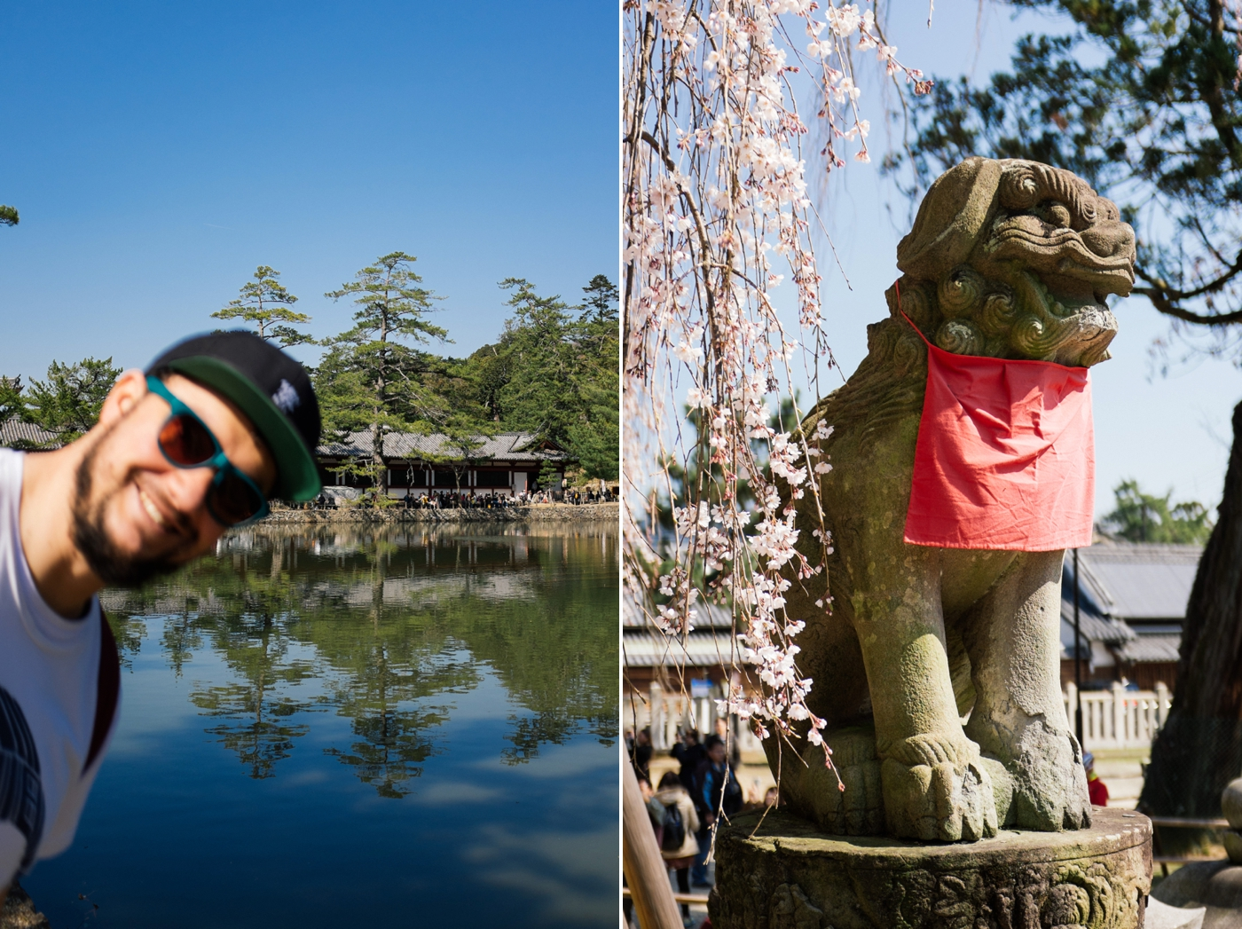 Japan Reise Kyoto Nara13