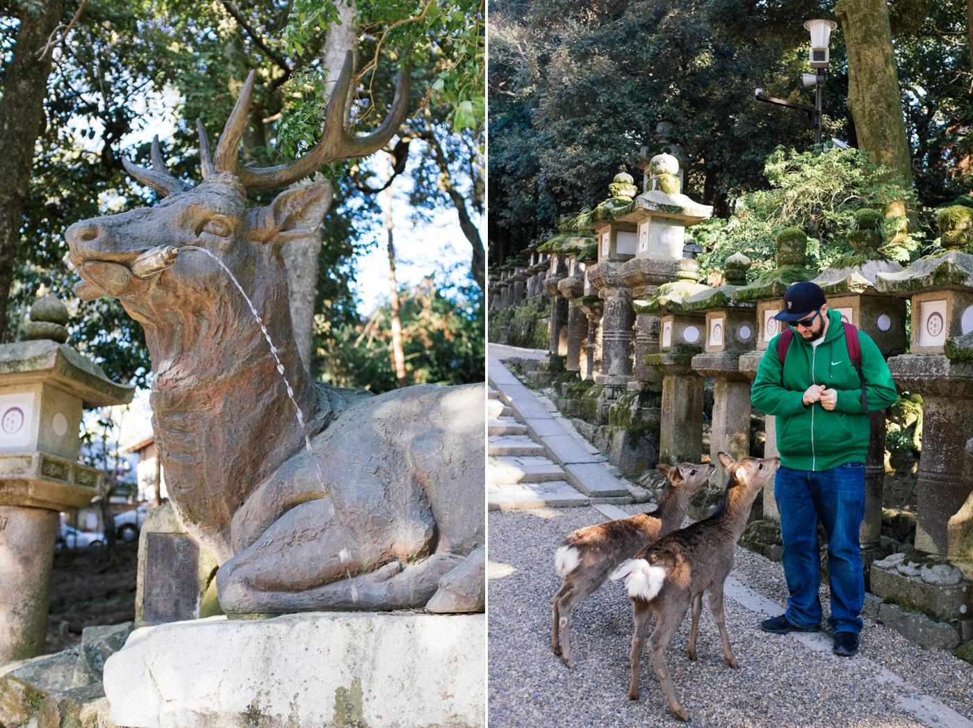 Japan Reise Kyoto Nara18