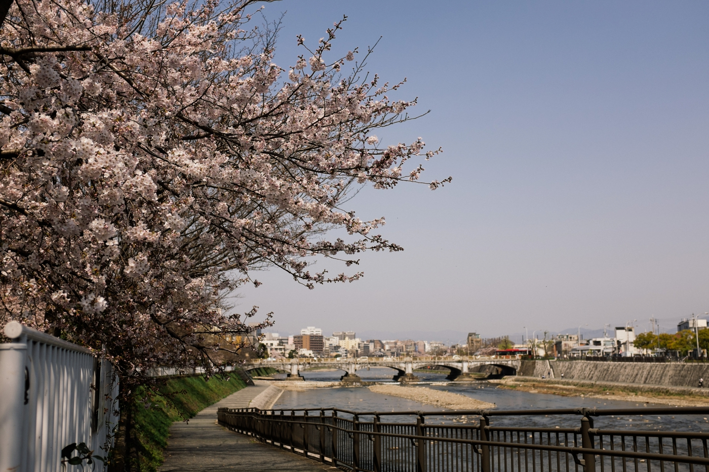 Japan Reise Kyoto Nara68