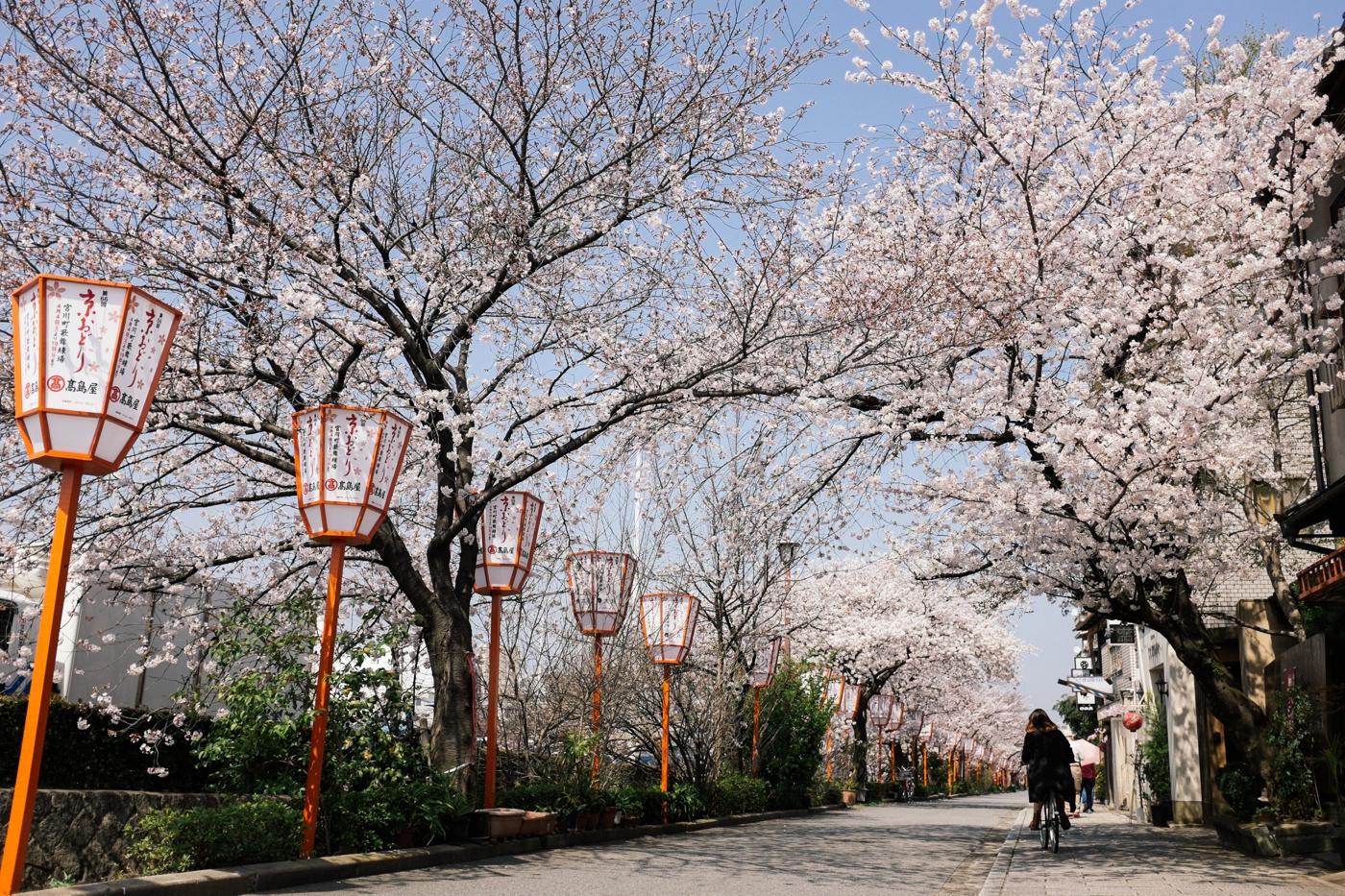 Japan Reise Kyoto Nara70