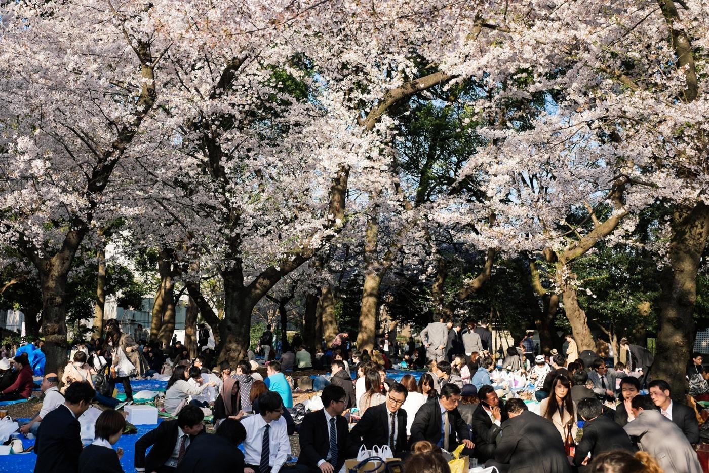 Japan-Tokio 85