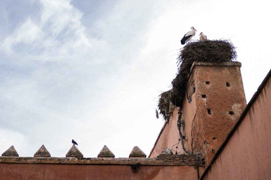 Reiseblog Marrakesch 116