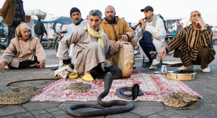Eine Woche in Marrakesch