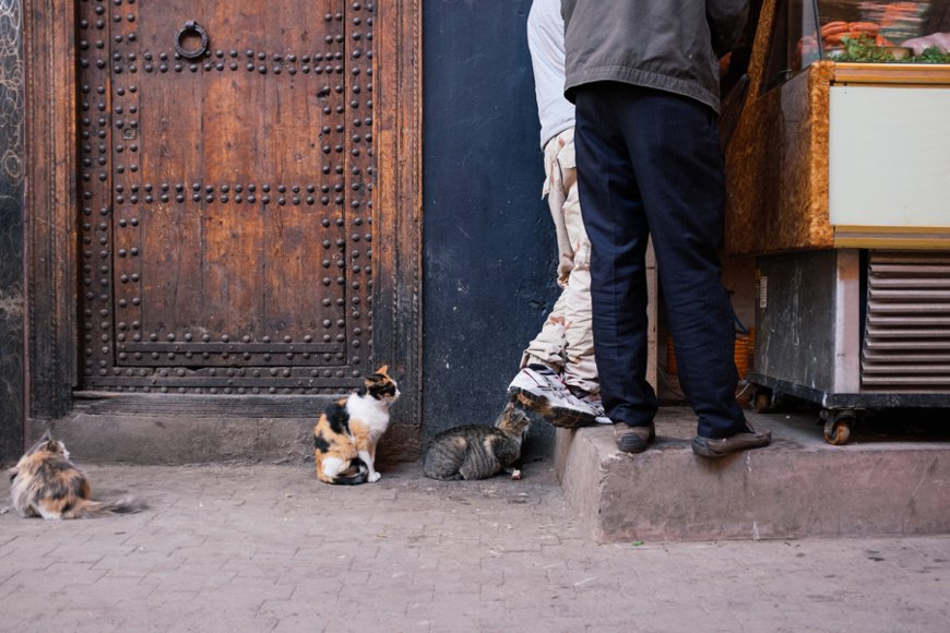 Reiseblog Marrakesch 32